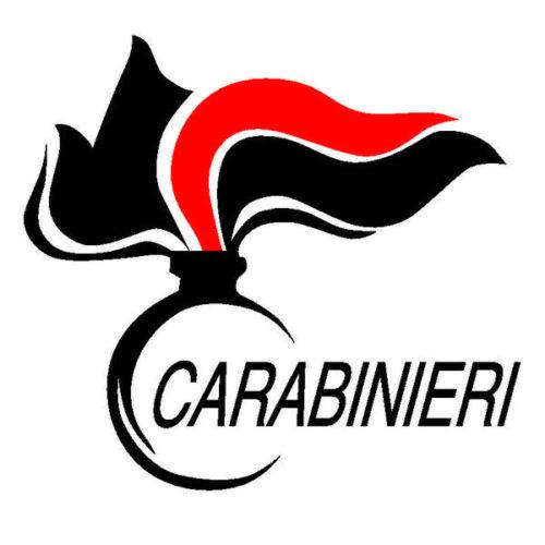 1948-2018 I CARABINIERI NEGLI ANNI DELLA COSTITUZIONE