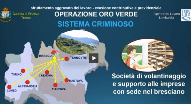 OPERAZIONE ORO VERDE – STRONCATA RETE DI SFRUTTAMENTO DEL LAVORO NEL NORD ITALIA